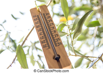 wood Thermometer - a thermometer in the shade of the tree...