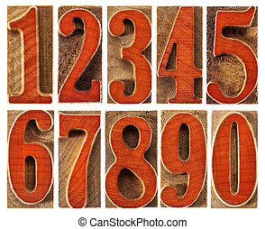 wood type numbers isolated set