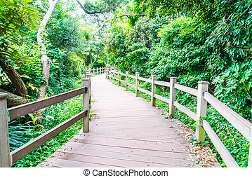 wood walkway at Seaseom Park in Jeju Island, South Korea