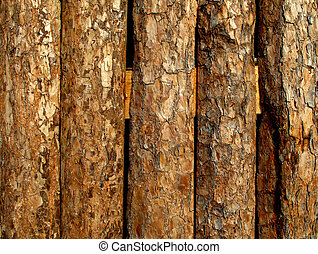 Wood wall from old log