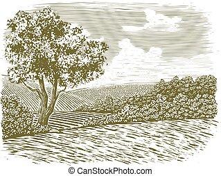 woodcut, countryside, scene