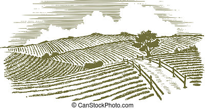Woodcut Countryside - Woodcut style illustration of a ...