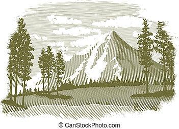 woodcut, lac montagne, scène