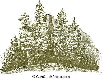 woodcut, montanha, desenho