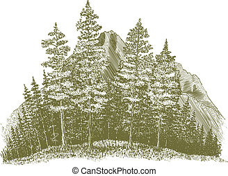 Woodcut Mountain Drawing - Woodcut-style illustration of a...