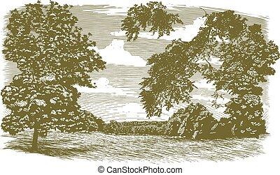 woodcut, paesaggio, missouri