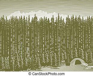 woodcut, selva, acampamento