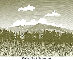 woodcut, selva