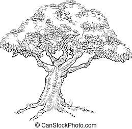 Woodcut sketch Style Tree - A tree, possibly oak, in a hand...