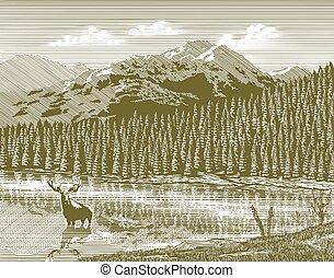woodcut, vendemmia, montagna