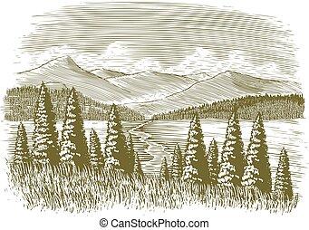 woodcut, vendimia, desierto