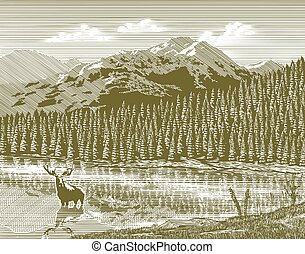 woodcut, vindima, montanha