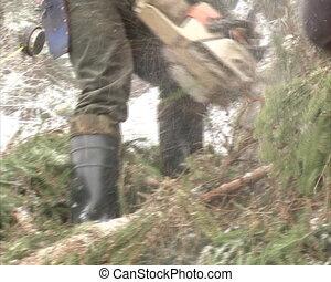 woodcutter chain saw cut