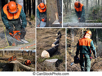 Forest worker cutting wood, trees. Lumberjack work set.