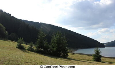 Wooded Lake Shore Time Lapse