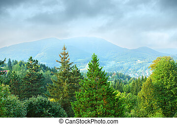 View of wooded mountains in Czech Republic