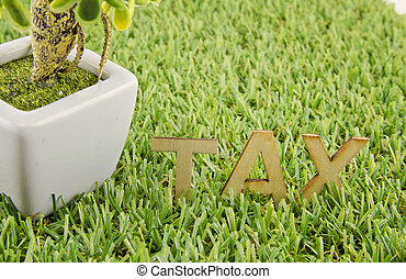 wooden alphabetical TAX word on artificial green grass. artificial in the pot on left