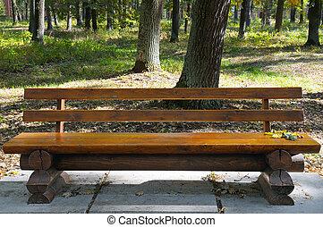 wooden bíróság, alatt, a, ősz, liget