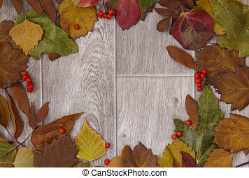 wooden background with colorful fall leaves arrangement. Copy space