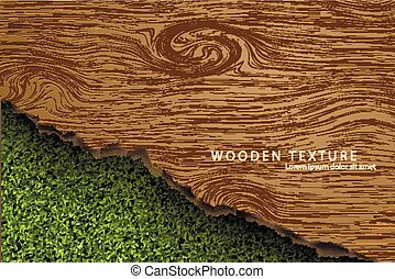 wooden background with shadows and grass - Template for the...