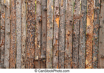 old wooden and bark texture as nice background