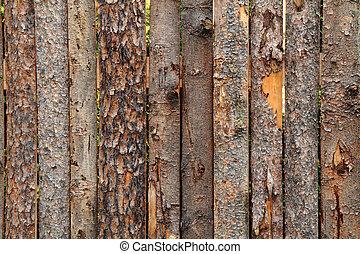 wooden bark texture