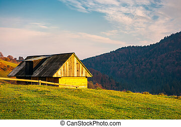 wooden barn in village outskirts on hill in morning light....