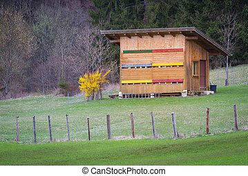 wooden beehouse in meadow next to forest