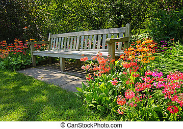 Wooden bench and bright blooming flowers, garden landscaping