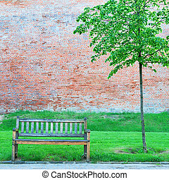 Wooden bench and small lonely tree in springtime