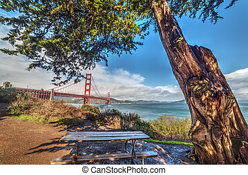 Wooden bench by Golden Gate bridge