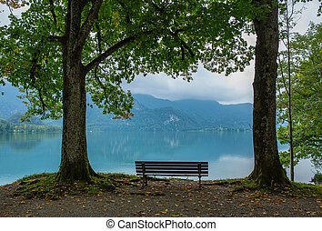 Wooden bench by the lake and blue sky next to the trees