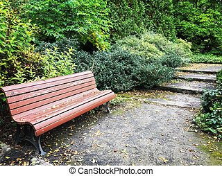 Wooden bench in a garden in early autumn