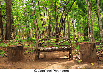 Wooden bench in an autumn forest seasonal