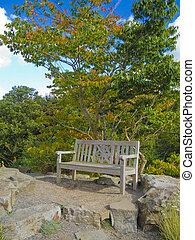 wooden bench in an autumn garden