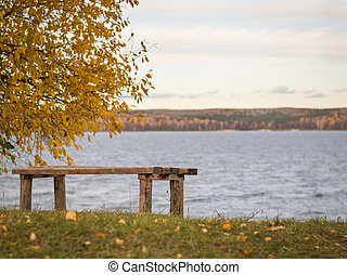 Wooden bench in autumn Park on the shore of the lake.