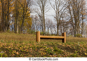 Wooden bench in autumn park.