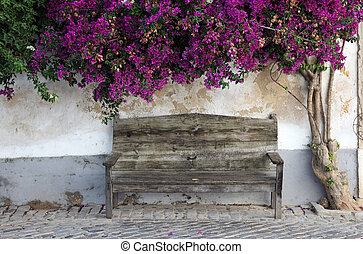 Wooden bench in the old town of Faro, Algarve Portugal