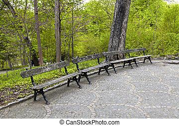 Wooden bench in the park Sophia. Uman, Ukraine - Old wooden...