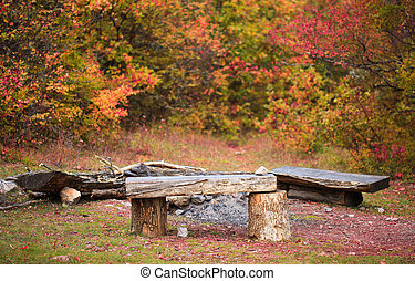 Wooden benches and bonfire site in autumnal forest on the meadow with fallen leaves.