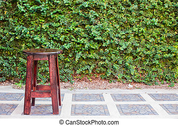 wooden benches with ivy on the wall in the background