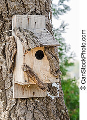 Wooden Bird House On A Tree