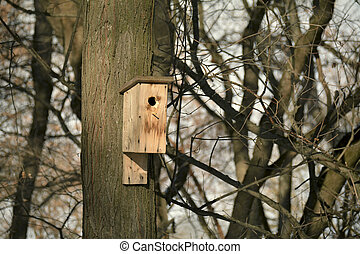 Wooden bird nesting house in early spring