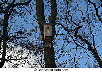 Wooden bird nesting house on the tree