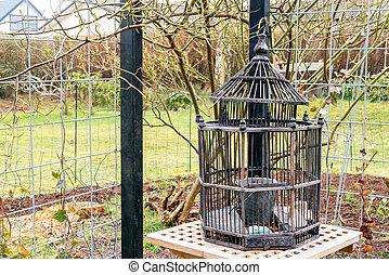 Wooden birdcage in a garden