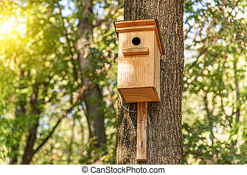 Wooden birdhouse for birds on a tree.