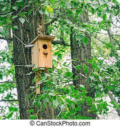Wooden birdhouse hangs on a tree trunk among the leaves