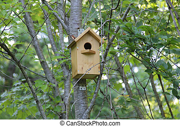 wooden birdhouse house for birds