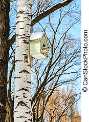 Wooden birdhouse on a birch tree in the winter park
