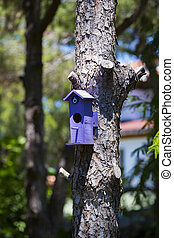 Wooden birdhouse on a tree trunk in the park.